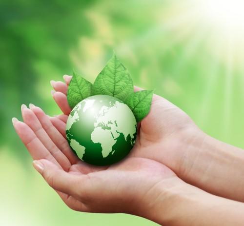 Introduzione ad alcune riflessioni sulla Bioetica Ambientale