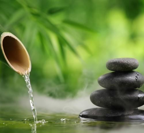 Le Cure Naturali e la Fitoterapia