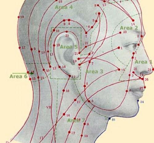 5. Le Proprietà terapeutiche dei Punti del Corpo Umano