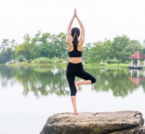 Le ventidue forme di Yoga
